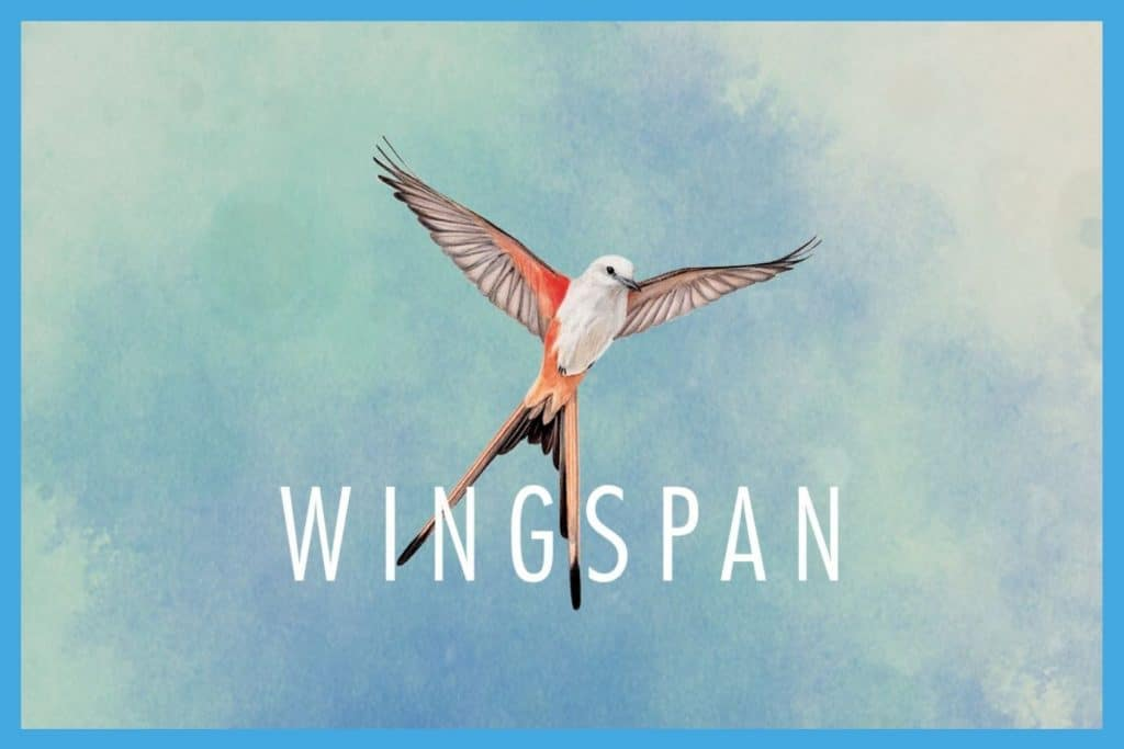 Wingspan App Review